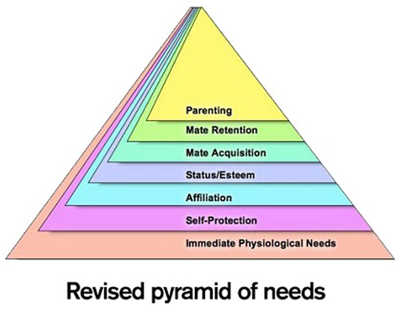 maslow's pyramid revised